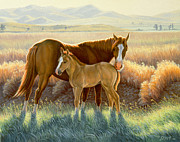 Bald-faced Sorrel And Colt Print by Paul Krapf