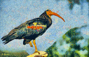 Surrealism Portrait Posters - Bald ibis Poster by George Rossidis