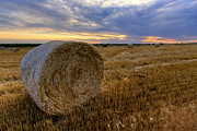 Haybale Photo Prints - Baled Print by Scott Bean
