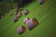 Jim Wilcox - Bales and Bales of Hay