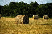 Hay Bales Digital Art Posters - Bales of Hay in a Texas Field in Digital Paint Poster by Sarah Broadmeadow-Thomas