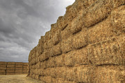 Barn Storm Prints - Bales of Hay on Farmland 2 Print by David Gn