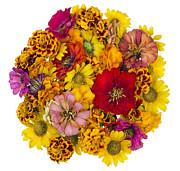 Aleksandr Volkov - Ball from summer flowers