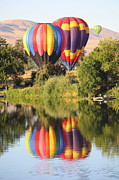 Hot Air Balloon Photos - Balloon Buddies by Carol Groenen