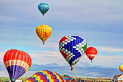 Scott Mahon - Balloon Festival