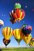 Balloon Grouping Print by Joe Myeress