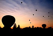 Greg Bush - Balloon Sunrise in Boise