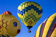 Quirky Framed Prints - Ballooning Framed Print by Garry Gay