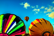 Balloon Aircraft Prints - Balloons Getting Ready Print by Robert Bales
