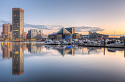 Patapsco River Photos - Baltimore Inner Harbor Skyline at Dawn II by Clarence Holmes