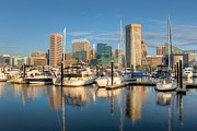 Patapsco River Photos - Baltimore Inner Harbor Skyline I by Clarence Holmes