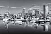 Patapsco River Photos - Baltimore Inner Harbor Skyline V by Clarence Holmes