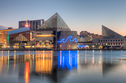 Patapsco River Posters - Baltimore National Aquarium at Dawn III Poster by Clarence Holmes