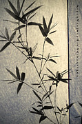 Chinese Ink Prints - Bamboo Leaves Print by Jenny Rainbow