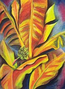 Tree Art Pastels - Banana Palm by Michael Alvarez