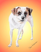 Animal Shelter Drawings - Bandito - a former shelter sweetie by Dave Anderson