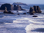 Bandon Beach Seastacks 6 Print by Tracy Knauer