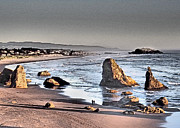 Donna Haggerty - Bandon Oregon