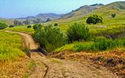 Gregory Dyer - Bane Canyon Trail