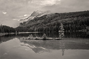 Alberta Rocky Mountains Prints - Banff Reflections Print by Dennis Hedberg