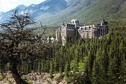Sandra Cunningham - Banff Springs Hotel