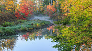 Tree Reflections In Water Prints - Bantam River Autumn Print by Bill  Wakeley