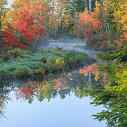 Reflections In River Prints - Bantam River Autumn Square Print by Bill  Wakeley