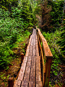 Chatham Prints - Baranof Boardwalk Print by Robert Bales