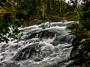 Silk Water Prints - Baranof River Print by Robert Bales