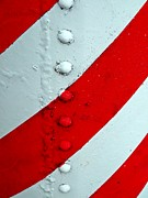 Painted Details Posters - Barber Pole Poster by Chris Berry
