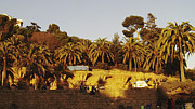 Parc Guell Prints - Barcelona Parc Guell Print by Freya Holdsworth