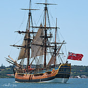 Royal Australian Navy Prints - Bark Endeavour- at the RAN Centenary Celebrations 2013. Print by Geoff Childs