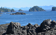 Lawrence Christopher Metal Prints - Barkley Sound and the Broken Island Group Ucluelet BC Metal Print by Lawrence Christopher