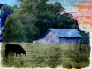 Special Gift Digital Art - Barn 30 Pastel by EricaMaxine  Price