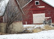 Red Barn In Winter Photos - Barn 36 by Todd Sherlock