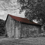 Barn At Avenel Plantation - Red Roof Print by Steve Hurt
