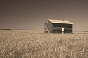 Shed Photo Posters - Barn at Chocteau Sepia Poster by Rich Franco