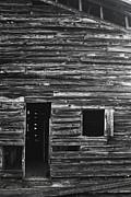 George Taylor - Barn Boards