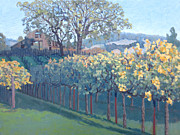 Autumn Vineyards Paintings - Barn Facade in Vineyard by Donna Schaffer