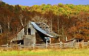 Barn In Fall Print by Marty Koch