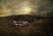 Old Barn Posters - Barn In Golden Light Poster by Kathy Jennings