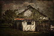 Barn Yard Photo Prints - Barn In Morning Light Print by Kathy Jennings