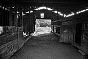 George Taylor - Barn Interior