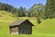 Little Cabin Prints - Barn on green meadow in the alps Print by Matthias Hauser