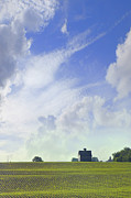 Field Of Crops Prints - Barn on Top of the Hill Print by Mike McGlothlen