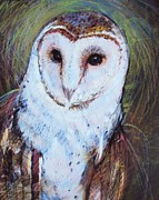Owl Pastels Framed Prints - Barn Owl 2 Framed Print by Tonja  Sell