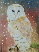 LeAnne Sowa - Barn Owl