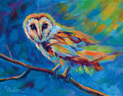 Colorful Owl Paintings - Barn Owl by Theresa Paden