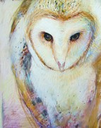 Owl Pastels - Barn Owl by Tonja  Sell
