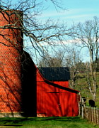 Red Barns Photo Prints - Barn Shadows Print by Karen Wiles